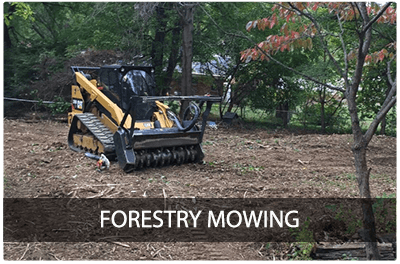 Forestry Mowing & Mulching by Ryex Services